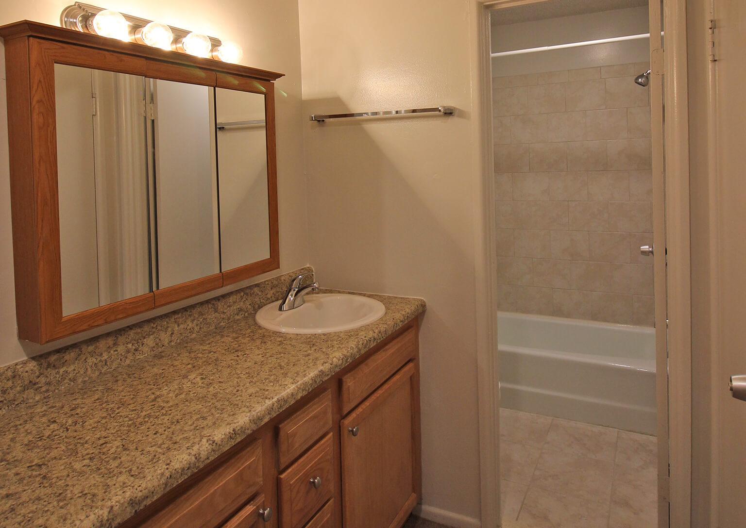 Village One Apartments - Bathroom